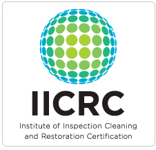 IICRC Certified Carpet Cleaner